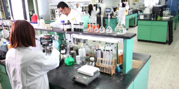 Laboratorio 12